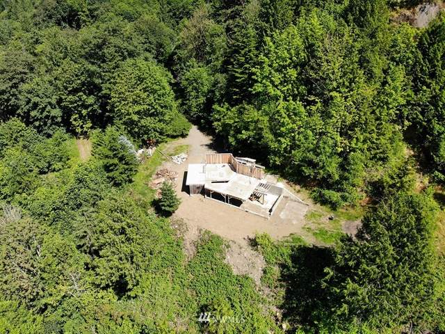 37630 E Lake Walker Drive SE, Enumclaw, WA 98022 (#1627030) :: Pickett Street Properties