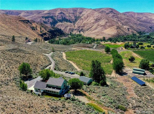 221 Canyon Vista Way, Ellensburg, WA 98926 (MLS #1627936) :: Nick McLean Real Estate Group