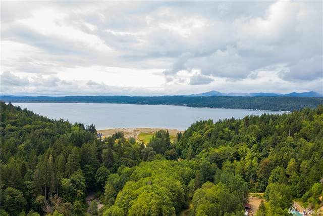 51 NE Ford Hill Road, Tahuya, WA 98588 (#1628453) :: Alchemy Real Estate