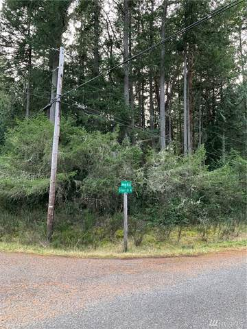 12820 Silver Dr, Anderson Island, WA 98303 (#1628592) :: Better Properties Lacey
