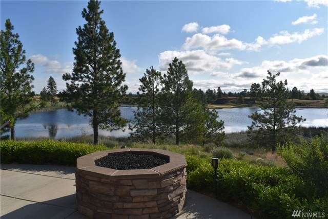 37227 S Long Rd, Cheney, WA 99004 (#1628654) :: Lucas Pinto Real Estate Group