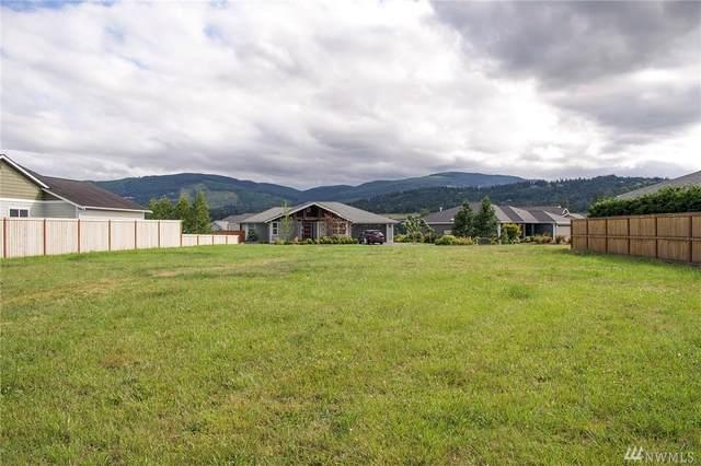 291 Jones Farm Rd, Sequim, WA 98382 (#1628694) :: Pickett Street Properties