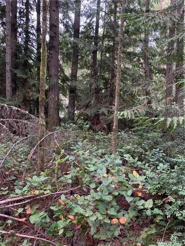 12908 Silver Dr, Anderson Island, WA 98303 (#1628774) :: Better Properties Lacey