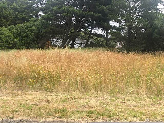 114 Ocean Shores Blvd SW, Ocean Shores, WA 98569 (#1629016) :: Canterwood Real Estate Team