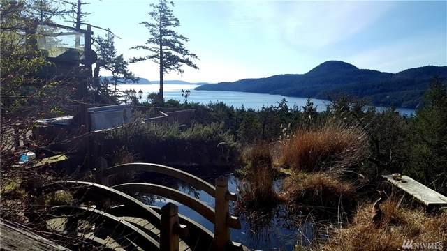 93 Veneda Trail, Orcas Island, WA 98245 (#1629055) :: Engel & Völkers Federal Way
