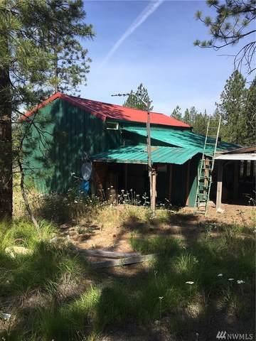 5 Look Out Trail, Riverside, WA 98849 (MLS #1629248) :: Nick McLean Real Estate Group