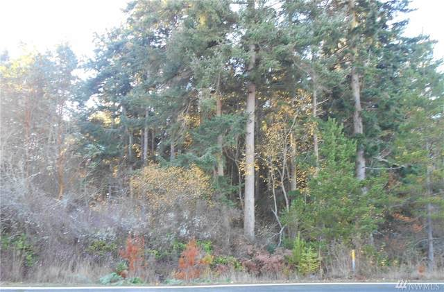 0 SW 24th Ave, Oak Harbor, WA 98277 (#1629328) :: Real Estate Solutions Group