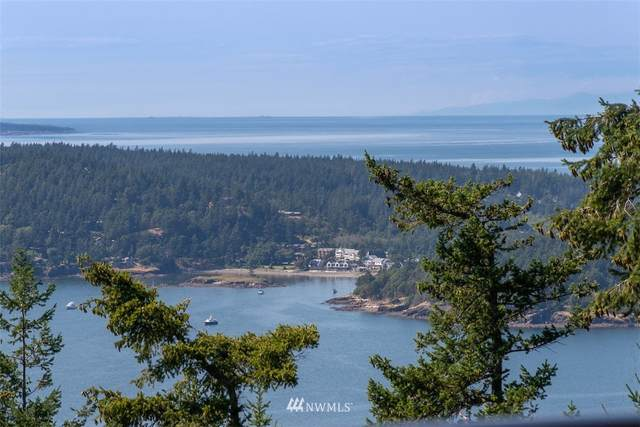 571 Lindsay Way, Orcas Island, WA 98245 (#1629509) :: NW Home Experts