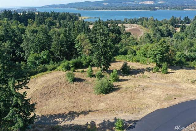 308 Dave's View Dr, Kalama, WA 98625 (#1629548) :: Canterwood Real Estate Team