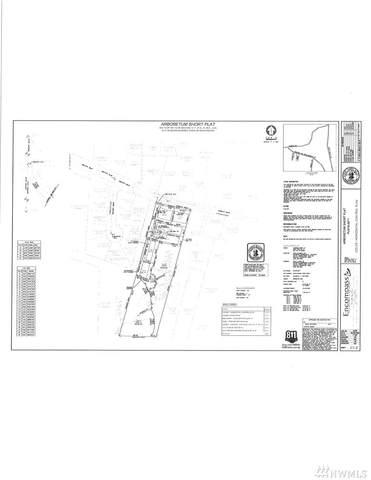 24601 Morgan Street, Black Diamond, WA 98010 (#1629551) :: Ben Kinney Real Estate Team