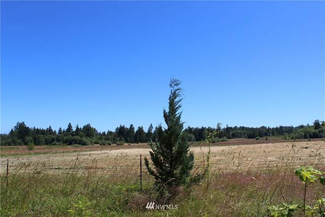 262 Laird Road, Port Angeles, WA 98363 (#1629596) :: Lucas Pinto Real Estate Group