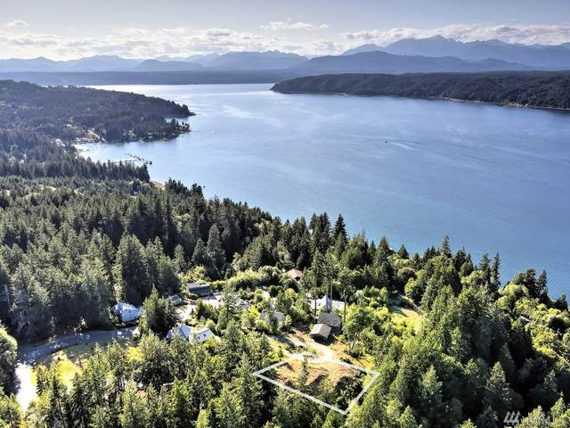 70 E Mount Ellinor Ct, Union, WA 98592 (#1630407) :: M4 Real Estate Group