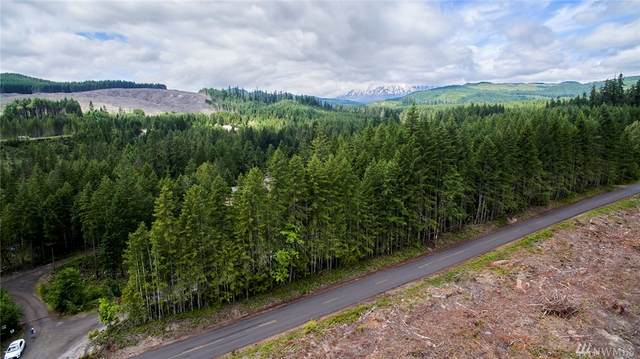 1 Nymark Drive, Cougar, WA 98616 (#1631366) :: Pacific Partners @ Greene Realty