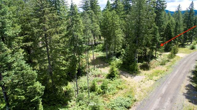 2 Lodgepole Lane, Cougar, WA 98616 (#1631384) :: Priority One Realty Inc.