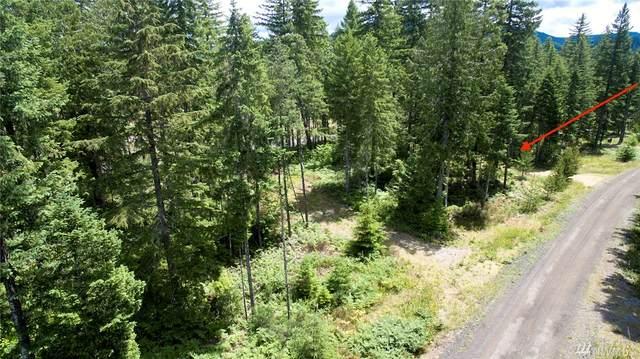 2 Lodgepole Lane, Cougar, WA 98616 (#1631384) :: Keller Williams Realty