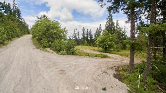1 Dolly Varden, Cougar, WA 98616 (#1631798) :: Mike & Sandi Nelson Real Estate