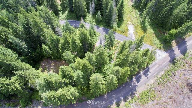 0 Lahar Lane #10, Cougar, WA 98616 (#1632049) :: Icon Real Estate Group