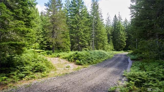 0 Lahar Lane #9, Cougar, WA 98616 (#1632057) :: Keller Williams Realty