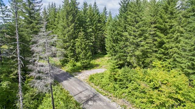 0 Lahar Lane #7, Cougar, WA 98616 (#1632062) :: Mike & Sandi Nelson Real Estate