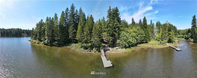 1071 NE Tee Lake Road, Tahuya, WA 98588 (#1632249) :: TRI STAR Team | RE/MAX NW