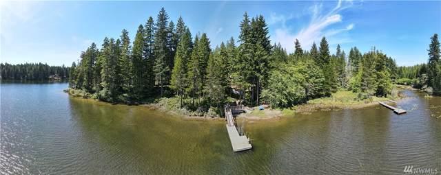 1071 NE Tee Lake Road, Tahuya, WA 98588 (#1632249) :: Ben Kinney Real Estate Team