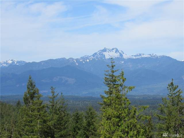 20-acres NW Green Mountain Road Lot 2, Bremerton, WA 98312 (#1633566) :: Better Properties Lacey