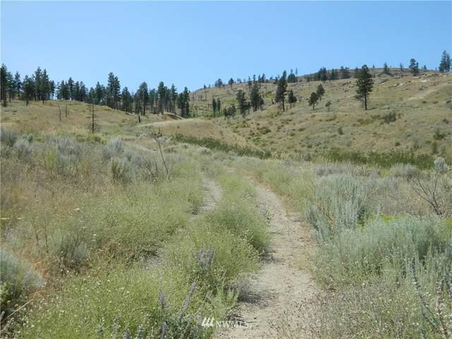 56 Twin Springs Road, Tonasket, WA 98855 (#1633964) :: Better Properties Lacey