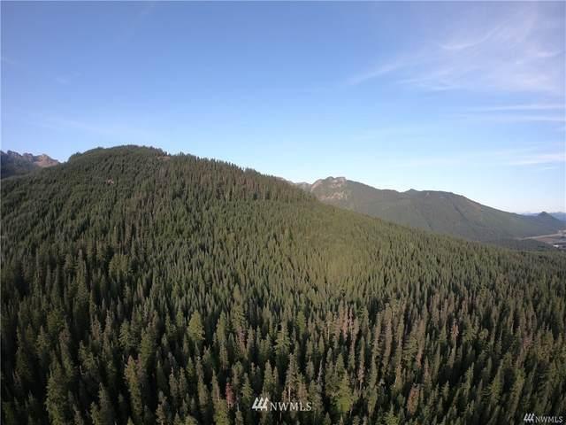 12 Yellowstone, Snoqualmie Pass, WA 98068 (#1634264) :: Mike & Sandi Nelson Real Estate