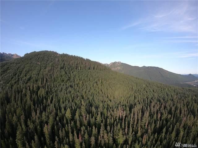 12 Yellowstone, Snoqualmie Pass, WA 98068 (#1634264) :: Ben Kinney Real Estate Team