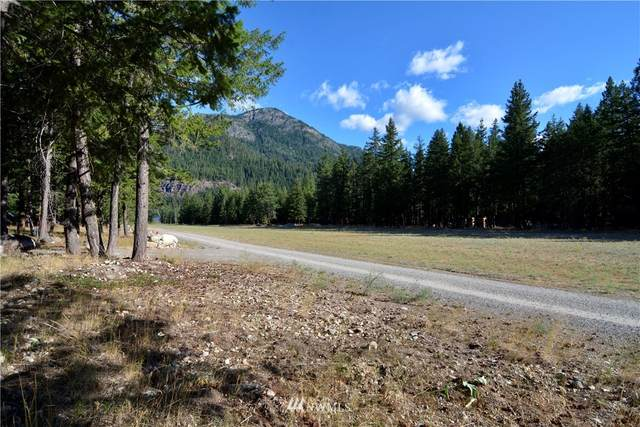 21 Emerson Road, Mazama, WA 98833 (#1635308) :: Pickett Street Properties