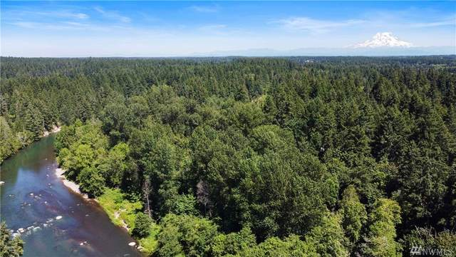 8422 Thuja Avenue SE, Yelm, WA 98597 (#1635860) :: NW Home Experts