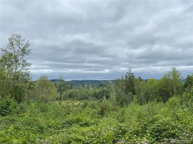 2 Norton Lane, Onalaska, WA 98570 (#1635933) :: Better Properties Lacey