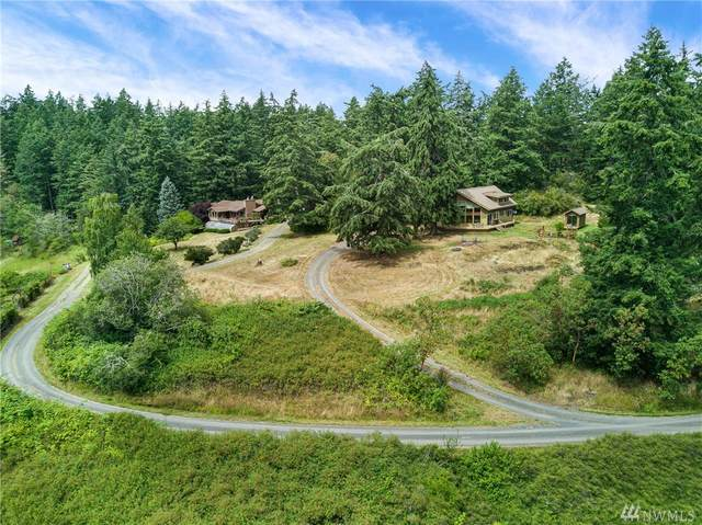 342 Marsh Drive, Friday Harbor, WA 98250 (#1636123) :: Lucas Pinto Real Estate Group