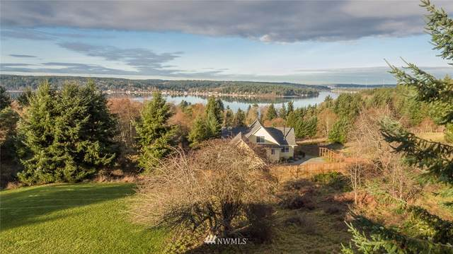 9480 SW 268th Street, Vashon, WA 98070 (#1636164) :: Lucas Pinto Real Estate Group