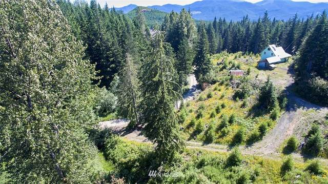 14 Wilderness Drive, Cougar, WA 98616 (#1636167) :: Pacific Partners @ Greene Realty