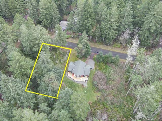 10518 Tahoma Dr, Anderson Island, WA 98303 (#1636231) :: Better Properties Lacey