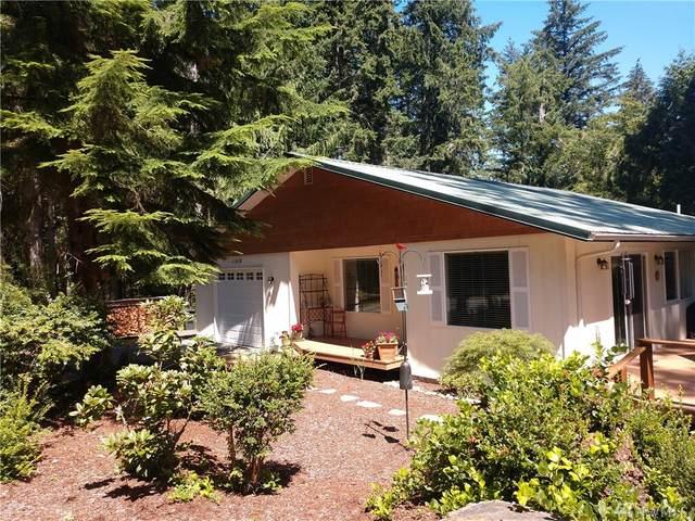 11519 Lake Josephine Blvd, Anderson Island, WA 98303 (#1636357) :: Better Properties Lacey