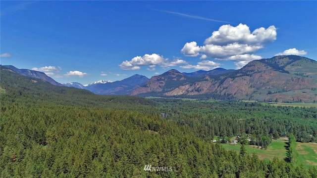 375 Wolf Creek Road, Winthrop, WA 98862 (#1636435) :: NW Home Experts