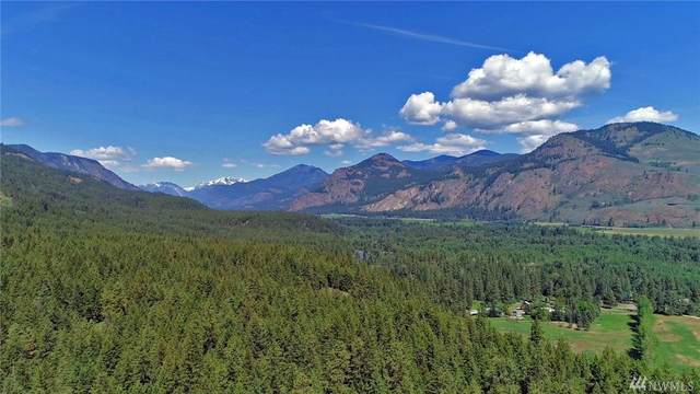 375 Wolf Creek Road, Winthrop, WA 98862 (#1636435) :: Capstone Ventures Inc
