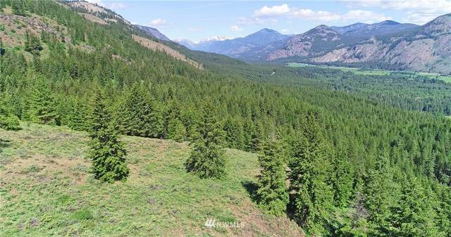 35 Fs 5005 Road, Winthrop, WA 98862 (#1636436) :: Better Properties Real Estate