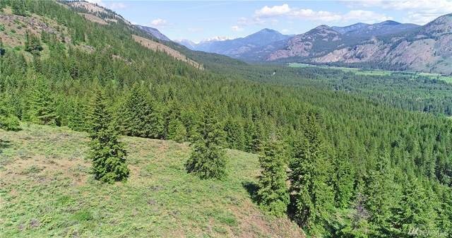 35 Fs 5005 Road, Winthrop, WA 98862 (#1636436) :: Capstone Ventures Inc