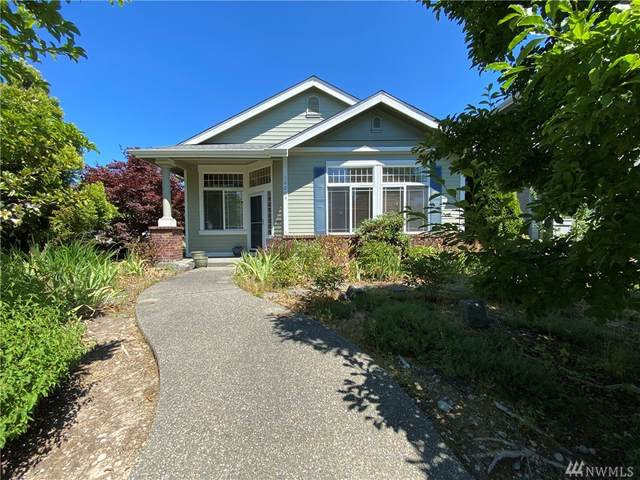 16204 SE 251st St, Covington, WA 98042 (#1636492) :: McAuley Homes