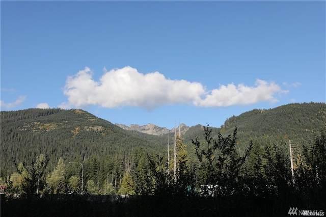 150 Olsen Drive, Snoqualmie Pass, WA 98068 (MLS #1636716) :: Nick McLean Real Estate Group