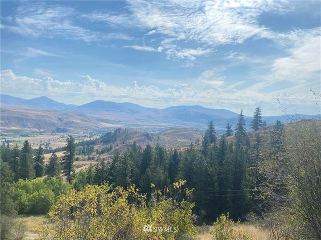 0 Wildcat Ridge Road, Twisp, WA 98856 (#1636795) :: TRI STAR Team | RE/MAX NW