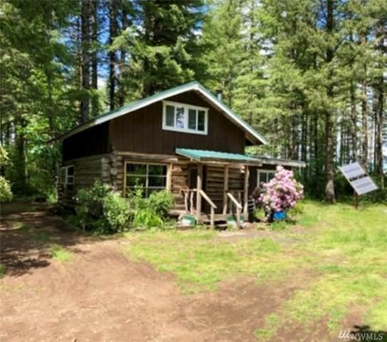 531 W Dry Bed Creek Road, Matlock, WA 98560 (#1636881) :: Better Properties Lacey