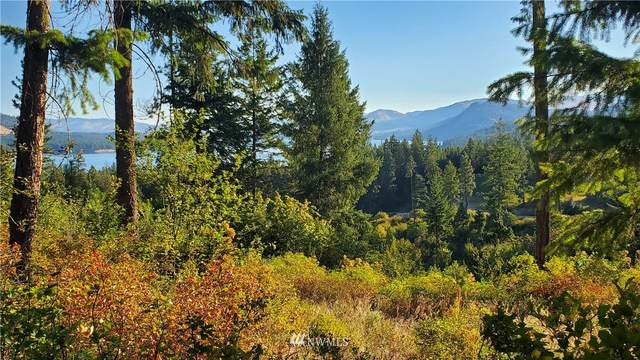 0 Beach Tracks Way, Fruitland, WA 99129 (#1637048) :: My Puget Sound Homes