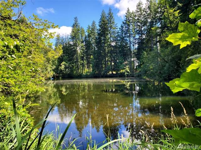 22120 Bluewater Dr SE, Yelm, WA 98597 (#1637061) :: NW Home Experts