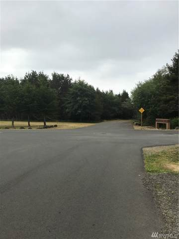 0 Lot 31 Surf Street, Westport, WA 98595 (#1637264) :: Becky Barrick & Associates, Keller Williams Realty