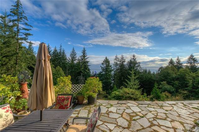 1784 Raccoon Point Road, Orcas Island, WA 98245 (#1637340) :: The Kendra Todd Group at Keller Williams