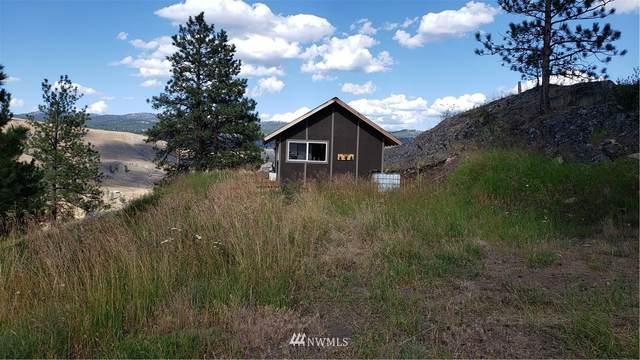 1111 Stehehkin Way, Tonasket, WA 98855 (#1637554) :: Better Properties Lacey